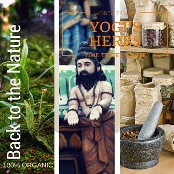 Yogi's Herbs (4)
